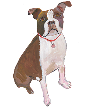 illustration of a dog by Maira Kalman