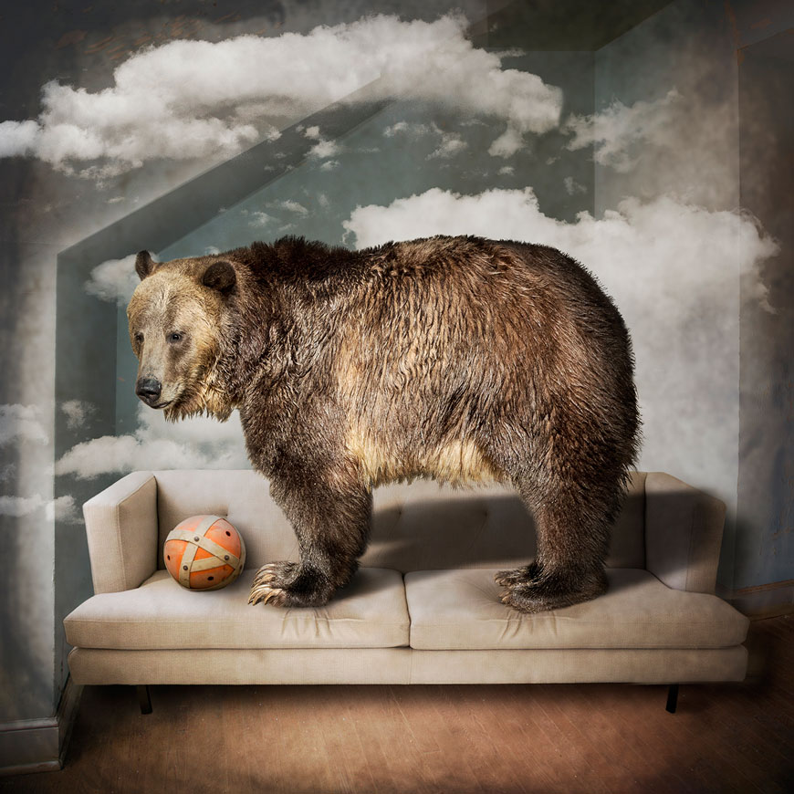 This composite image of a bear is by Carol Erb, who constructed it using original photos and Adobe Photoshop.