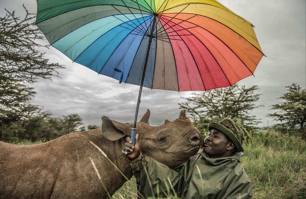 Ami Vitale has been documenting conservation efforts aimed at saving rhinos in Africa. This photo shows a rhino and its human protector.