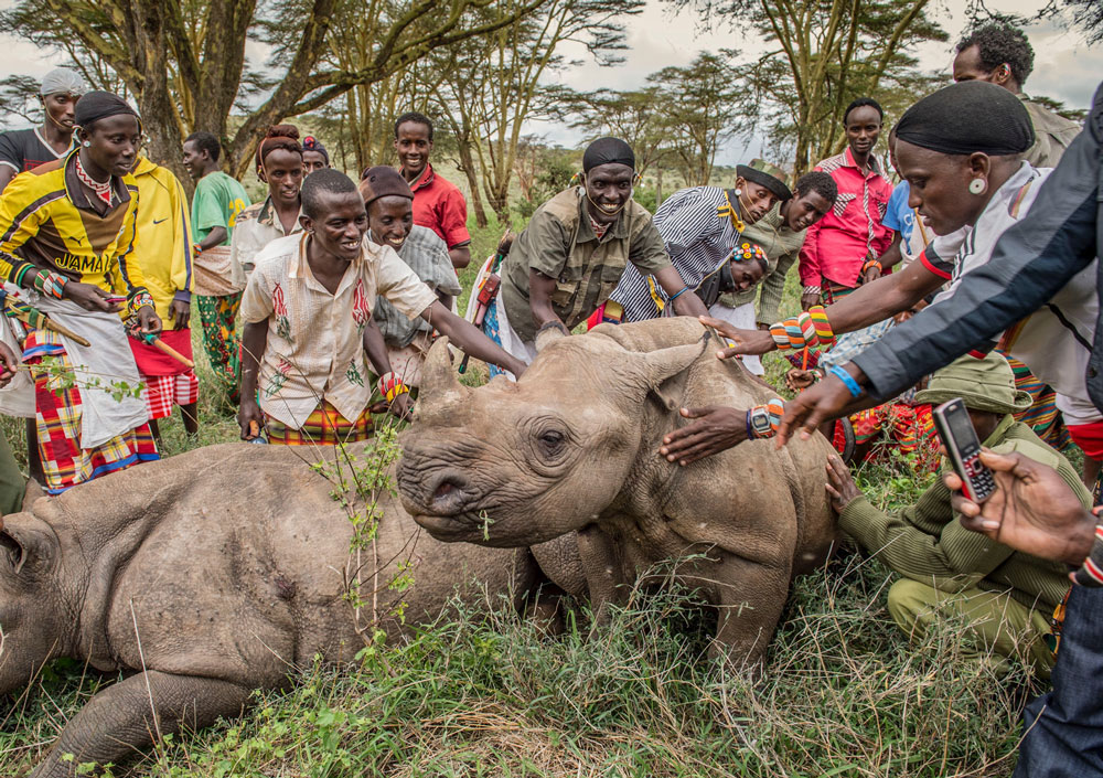 Ami Vitale has been documenting conservation efforts aimed at saving rhinos in Africa. This photo shows juvenile rhinos and their human protectors.