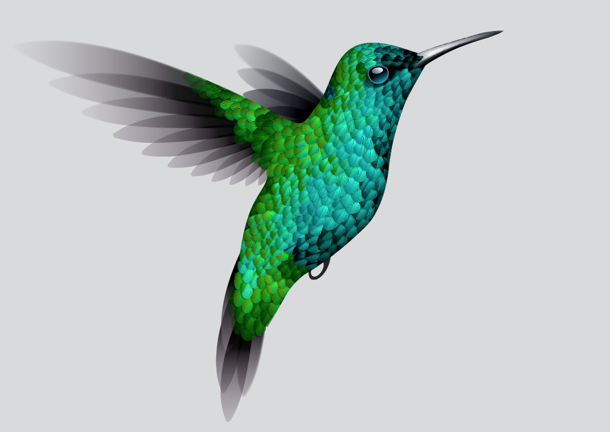 List of Synonyms and Antonyms of the Word: hummingbird ...