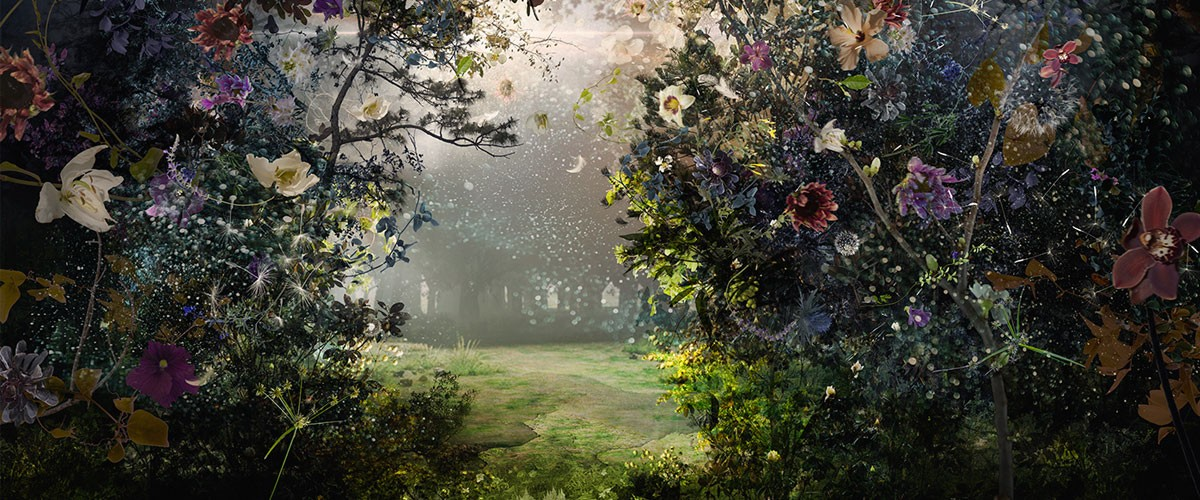 An image of a magical garden by Ysabel LeMay