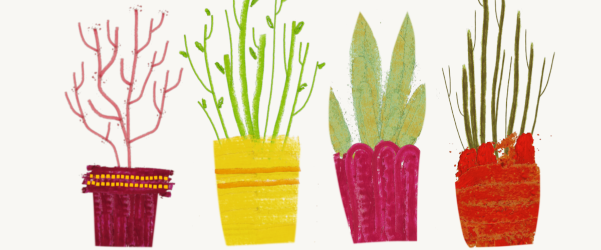 An illustration of plants by Syd Weiler