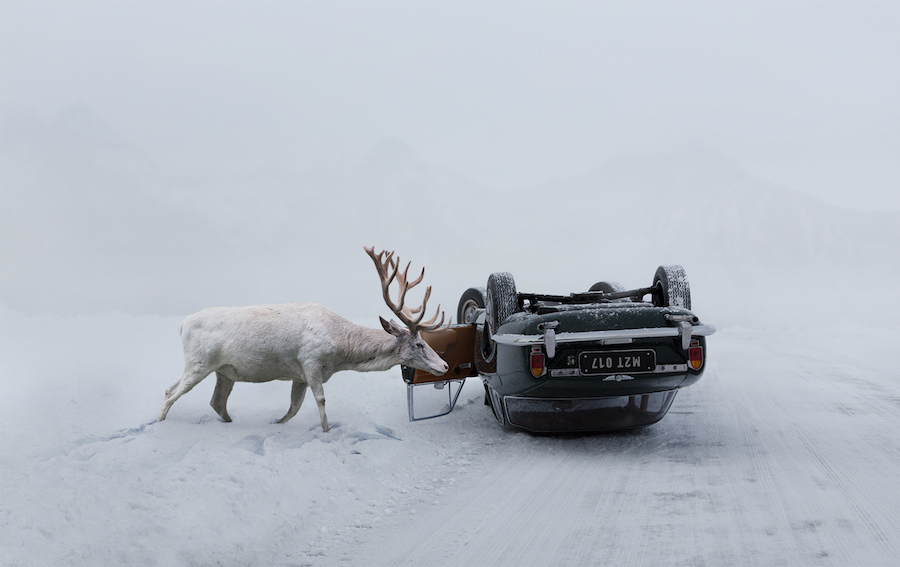 first composite of a deer and a car in Stranka's how-to