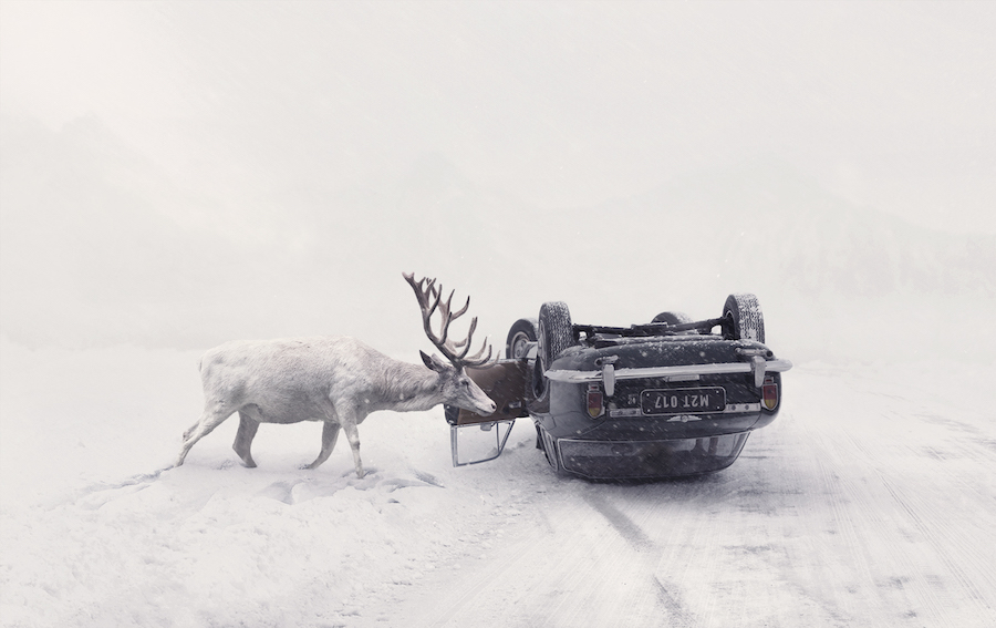 Martin Stranka's Until You Wake Up composite, featuring an image of a white deer and a crashed car.