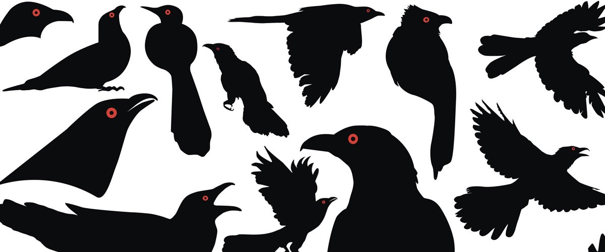 This image shows early vector drawings by Jasmin Rubero as she designed the logo for Kokila, a new imprint from Penguin Books.