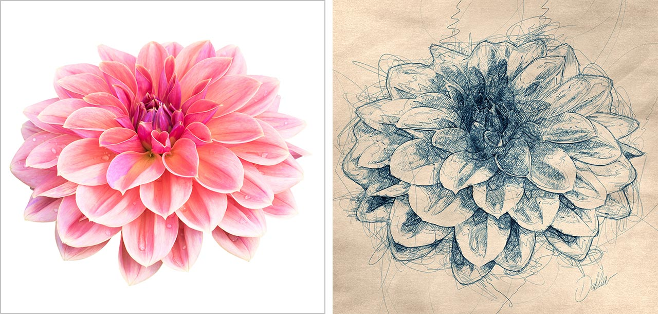 Turn Photos into Illustrations with a Free Photoshop Action