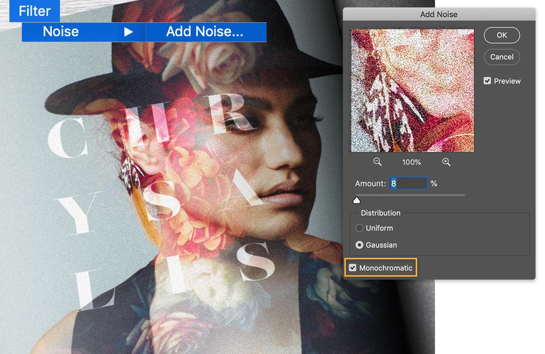 Model image has grain effect applied, the Add Noise dialog shows the noise Amount set to 8%, Monochromatic box is checked