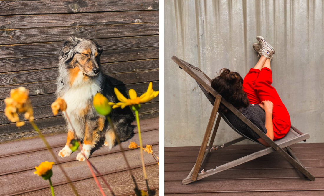 Left: Dog sits behind yellow flowers & turns head from the sun; Right: Woman sits in deck chair with feet on concrete wall