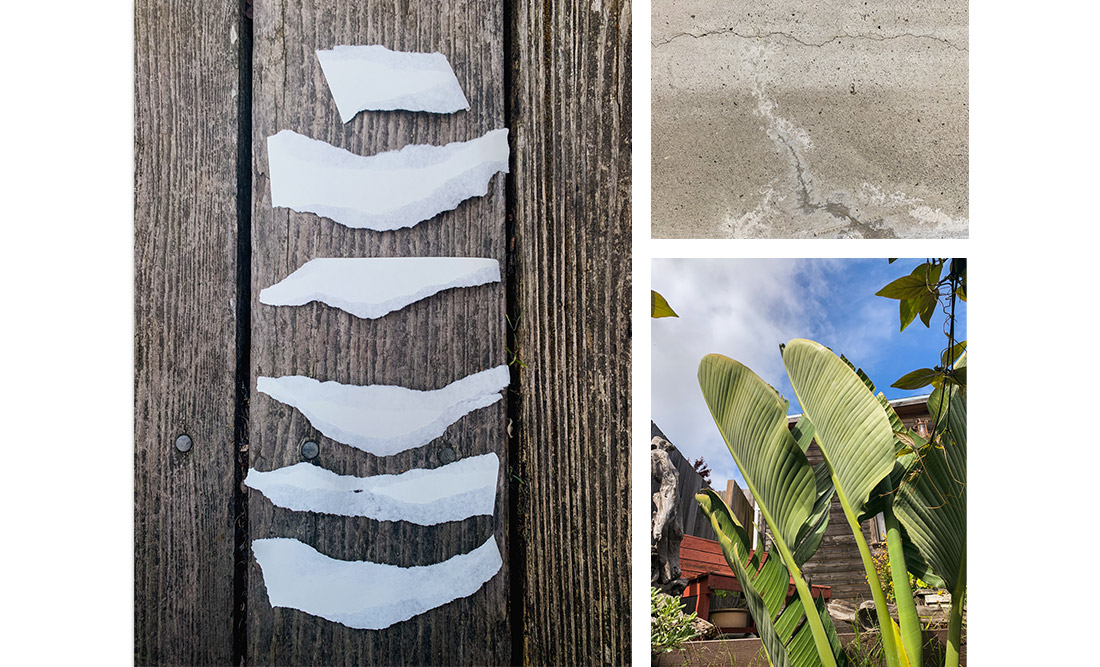 Left: Torn paper pieces on wood background; Top-right: concrete; Bottom-right: Green tropical plant against blue sky