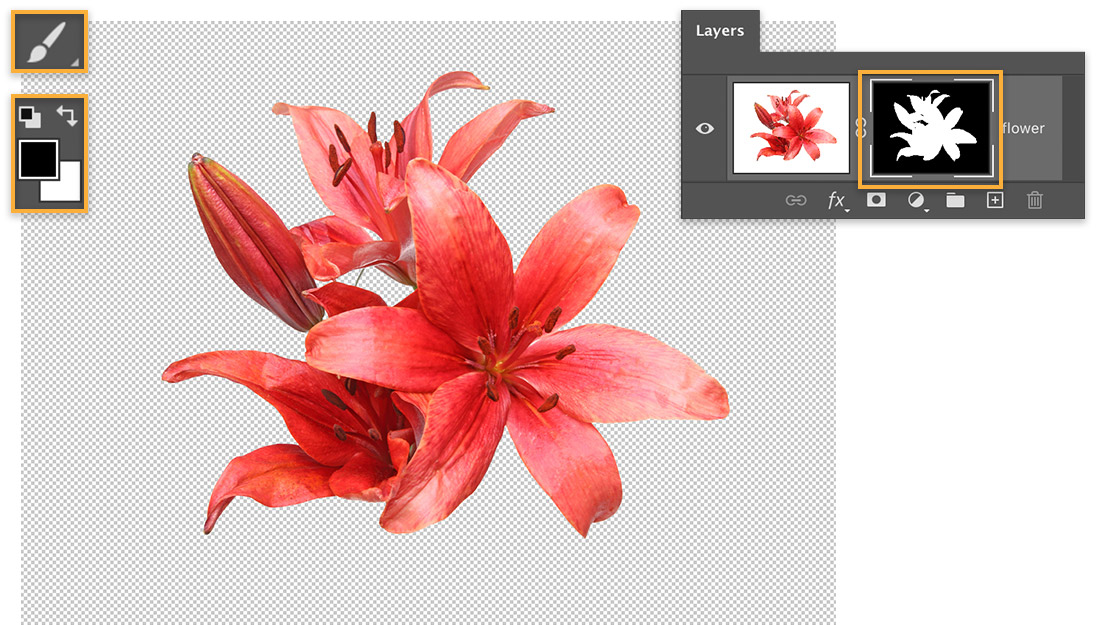 Red flower on transparent background, Brush tool set to black, mask on flower layer shows hidden background in black
