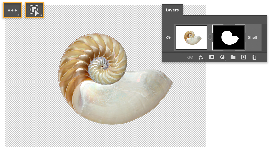 Nautilus shell on transparent background, More tools and Object Selection tool icons display upper left, mask on shell layer