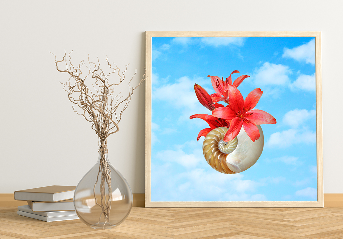 Nautilus shell with red flower against a blue sky displays in light wood frame next to glass vase with branches and books
